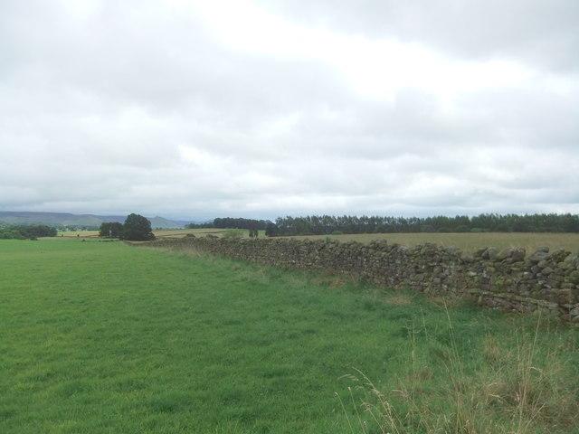 Fields near Howrigg Farm