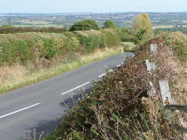 Trimmed hedgerows along Upper Field Lane