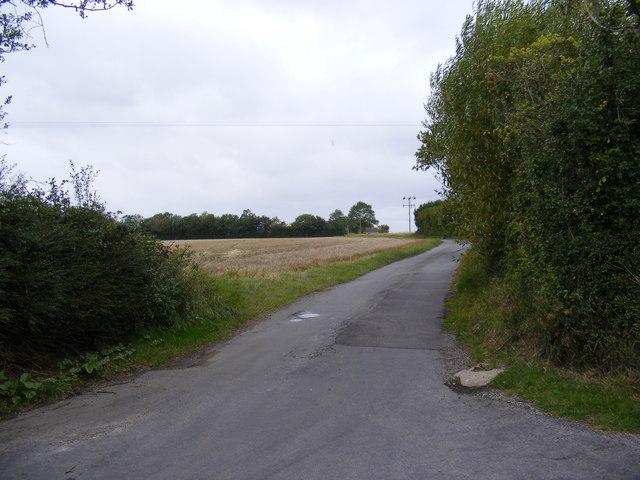 Lane to Bird's Lane