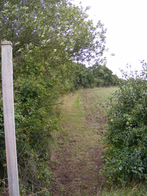 Footpath to Bird's Lane
