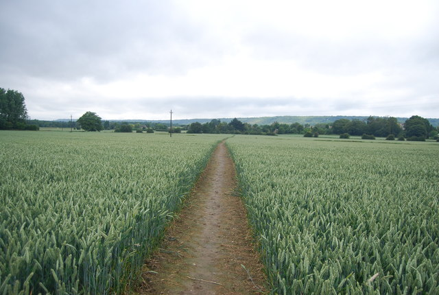 Footpath to Birling