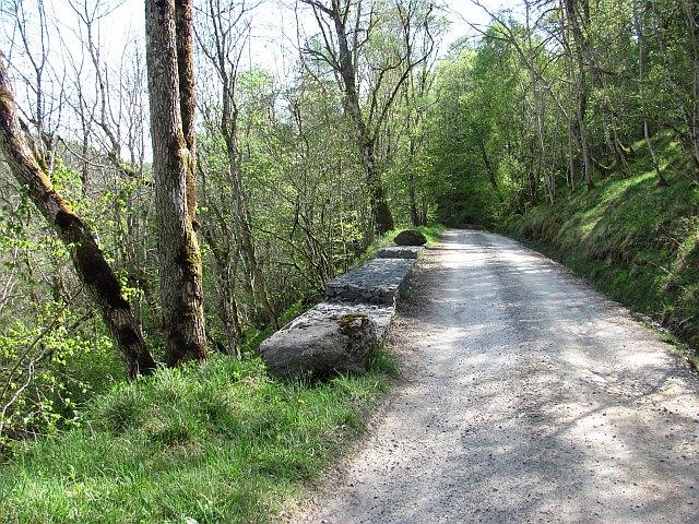 Road in Glen Tilt
