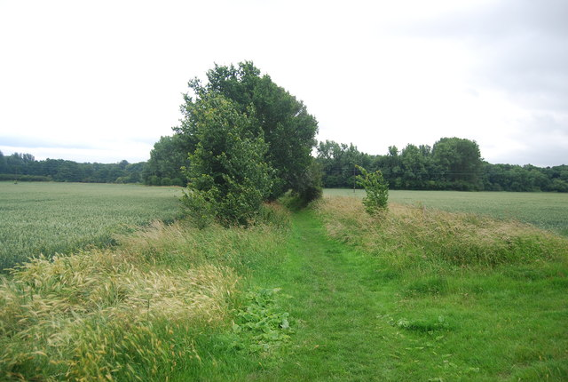 Footpath south from Birling