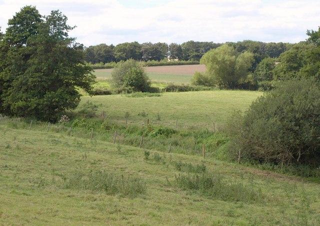 Farmland near Patney