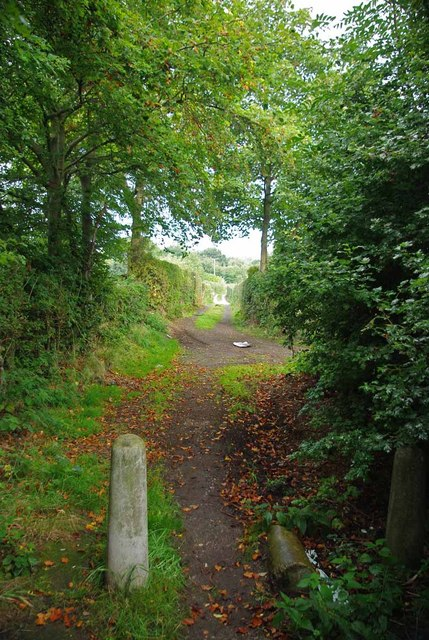 Allotment Path