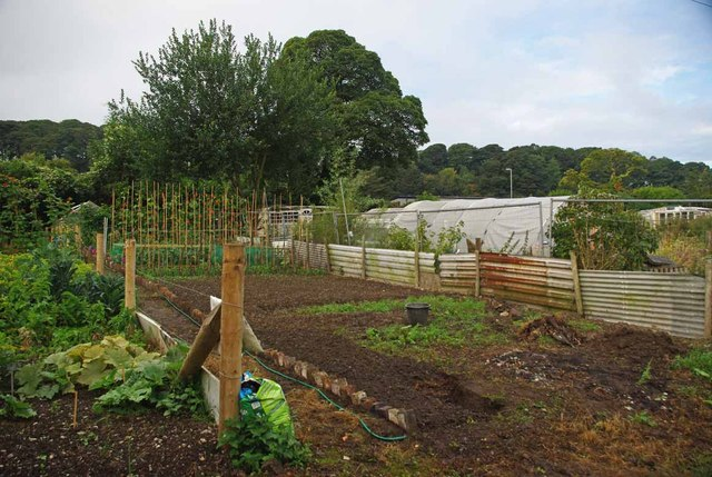 Silverdale Allotments