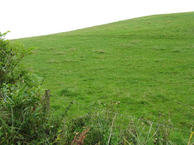 Hilly pasture at Outerston