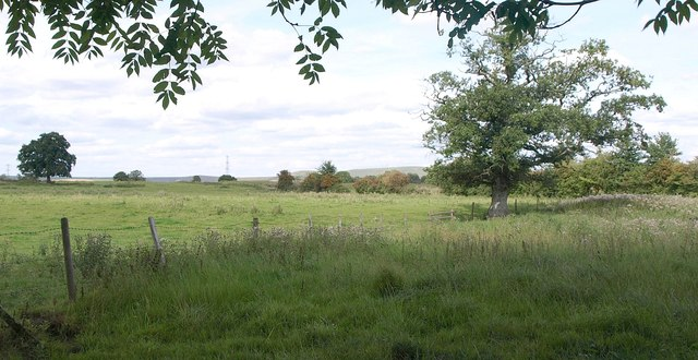 Pasture near Heath Knapp Farm