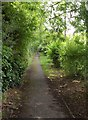 SU0460 : Former lane at Etchilhampton by Derek Harper