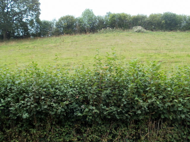 Steeply rising ground NW of Ewyas Harold