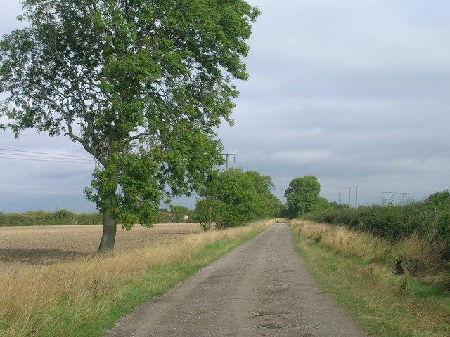 Common Lane towards Almholme