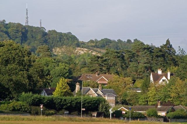 Across Reigate Heath