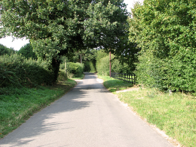 This way to Necton on Brown's Lane