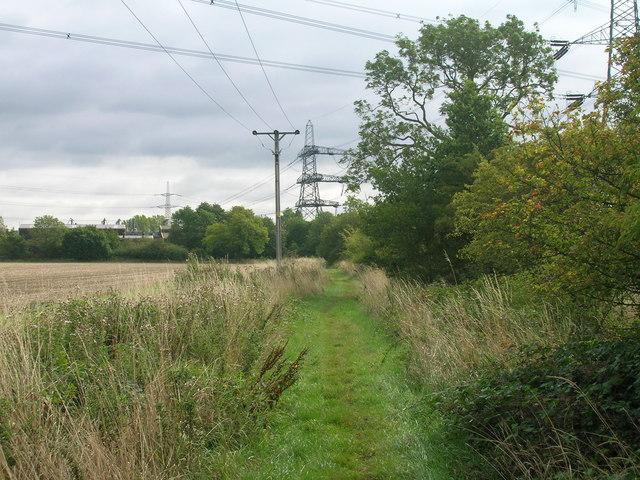 Royalty Lane (bridleway) heading east