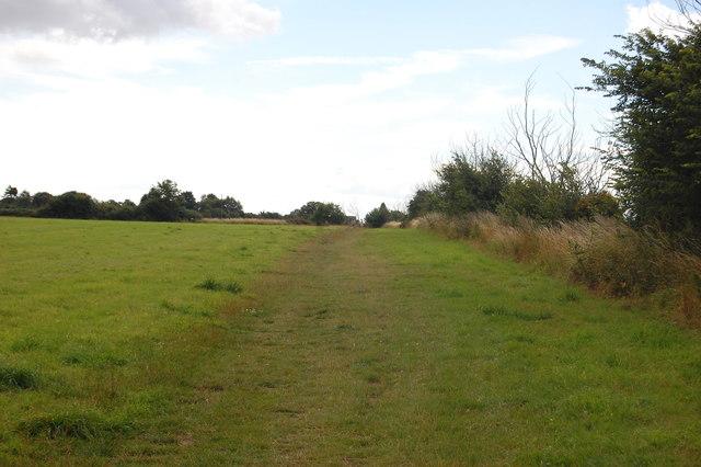 The Essex Way 162: towards Little Oakley