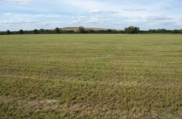 Larger than expected field by Marsh Lane