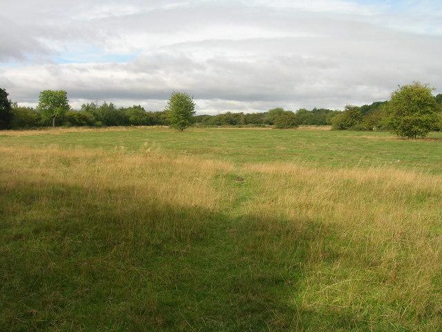 Bridleway towards Tilts