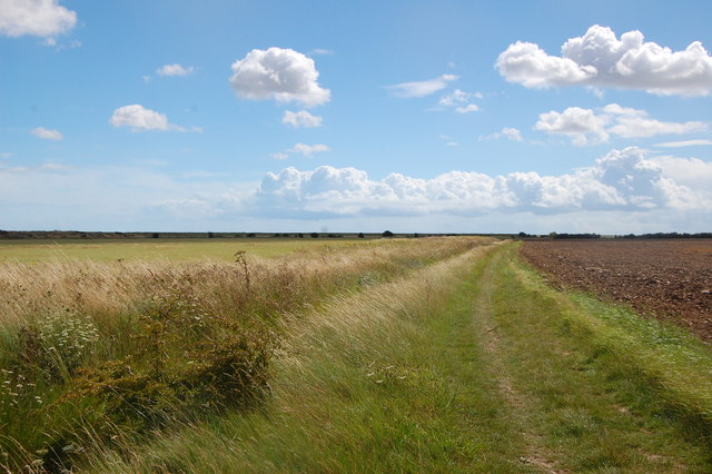 The Essex Way 164: heading for the sea wall