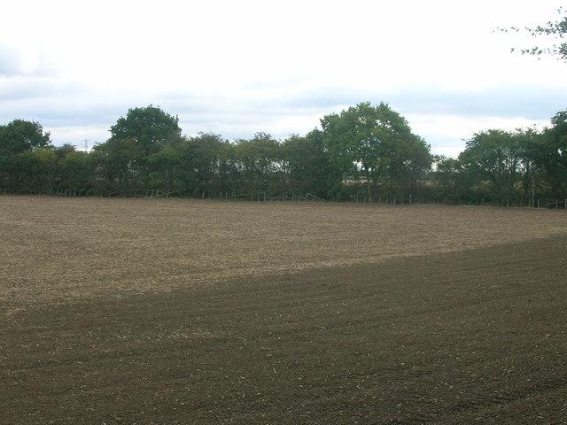Farmland off Shaftholme Lane