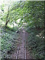 TL4602 : Disused railway, Epping by Malc McDonald
