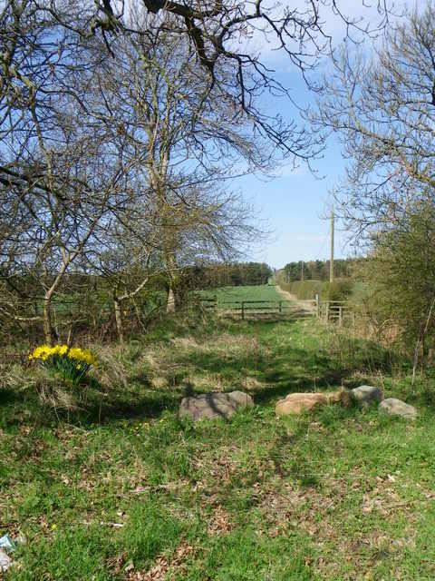 Track near Cairncross