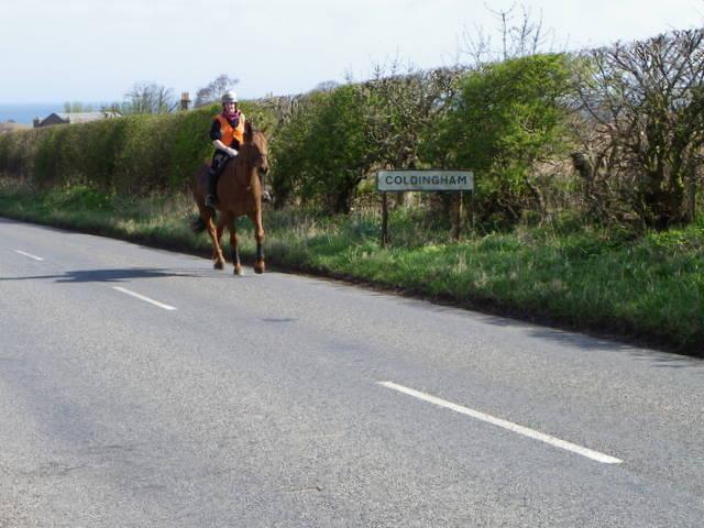 Reston Road, Coldingham