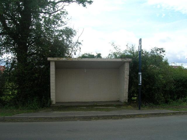 Bus shelter, Moss