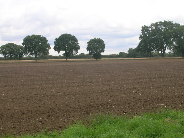 Farmland, New Ings