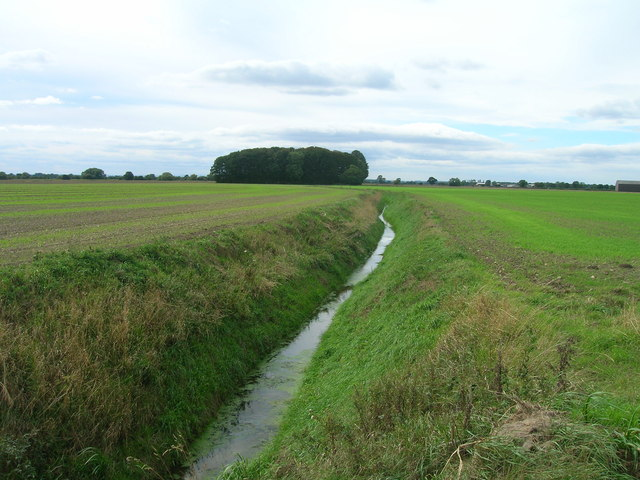 Field drain near Balne Hall