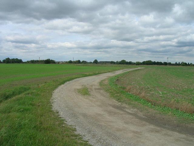 Cycle path towards Balne Lodge