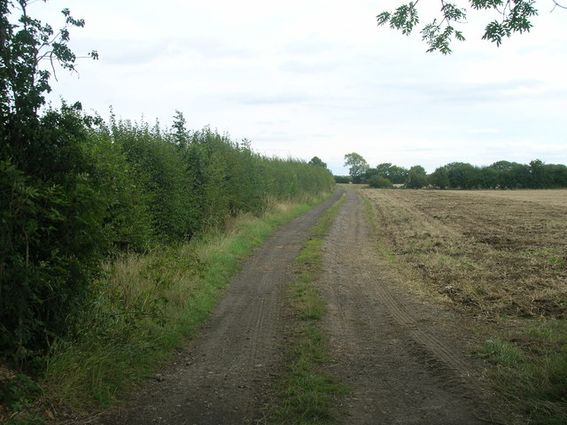 Farm track, Balne Croft