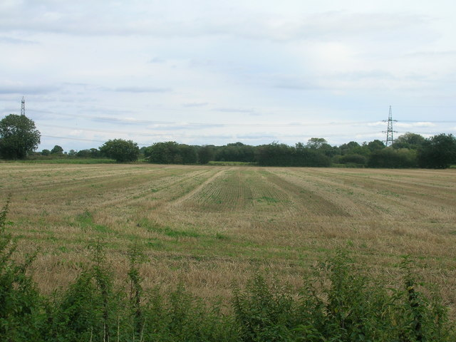 Farmland, Pollington