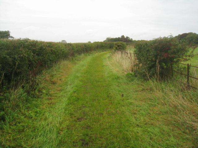Track near Steventon