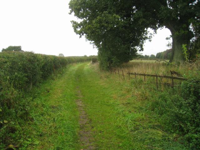 Track to Steventon church