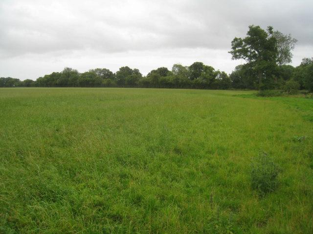 Farmland near Steventon