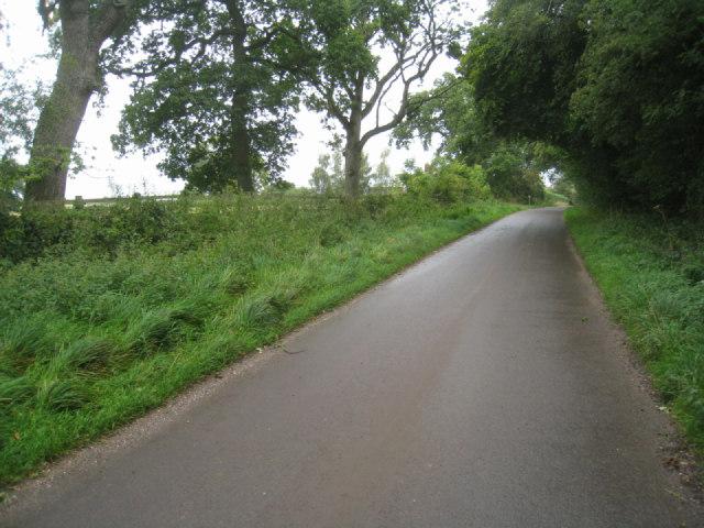 Lane south of Steventon