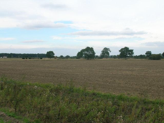 Farmland off Lowgate