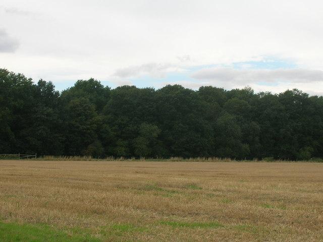 Parkshaw Wood