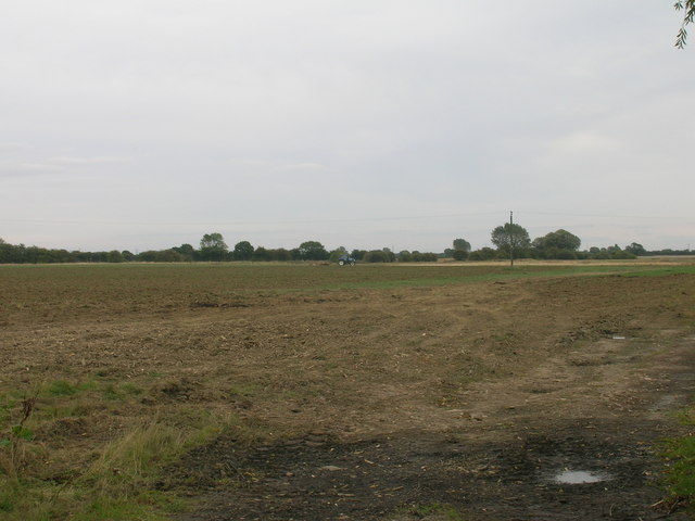 Farmland, Norton Common