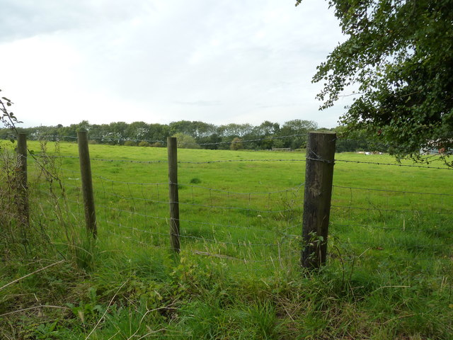 Field at the end of Bossington Lane