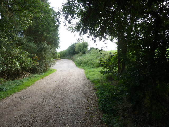 Mid section of Bossington Lane