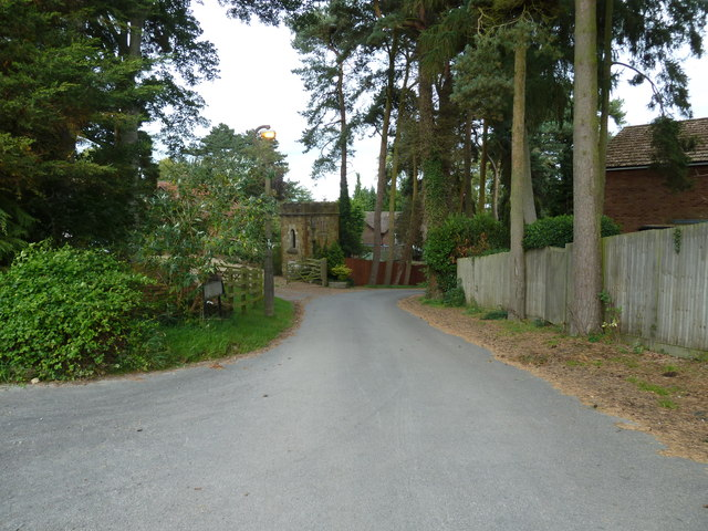 Looking from Bossington Lane into The Martin's Drive