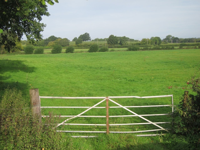 Field by Hope House Lane