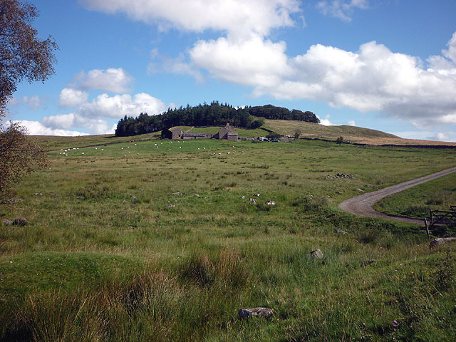 The forward ditch of Hadrian's Wall near Hotbank Farm