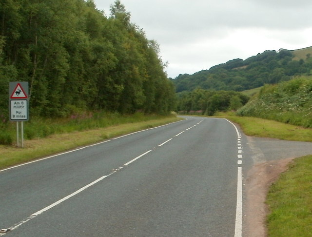 Beware of deer in the road for eight miles ahead, south of Defynnog