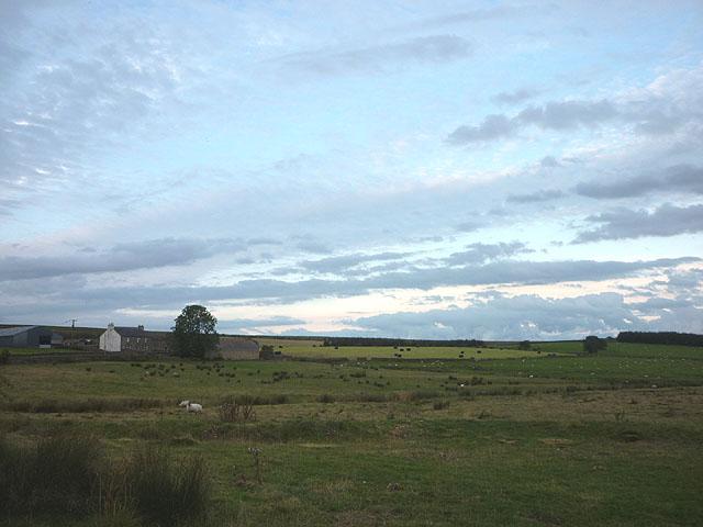 Pasture land at Moss Peteral