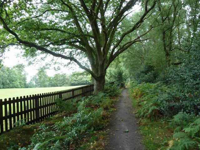 Path from Church Lane to All Saints Church, Bow Brickhill