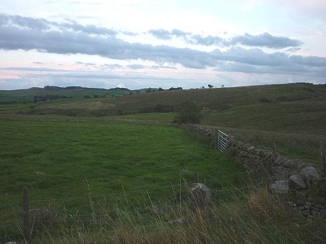Pasture above Gilsland