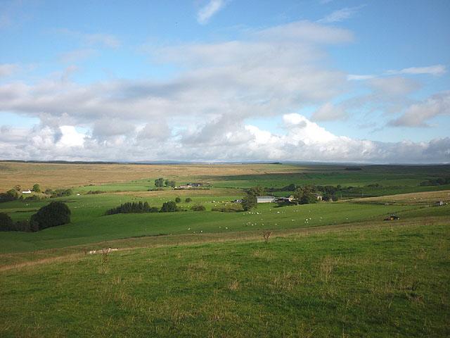 Sheep pastures around Low Old Shield