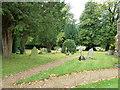 SP9832 : Church End- St. John the Baptist, Eversholt: churchyard by Basher Eyre